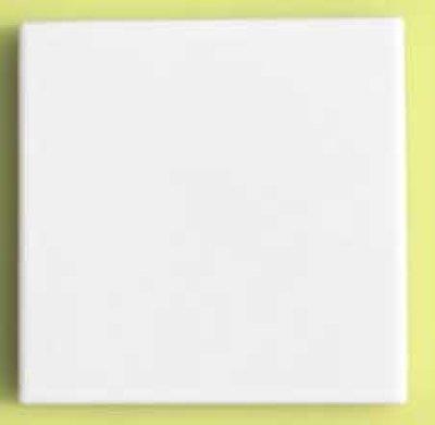 画像2: 100角B-1 磁器質 内外装壁 白色ブライト